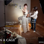 featured - In a Cage-Setup